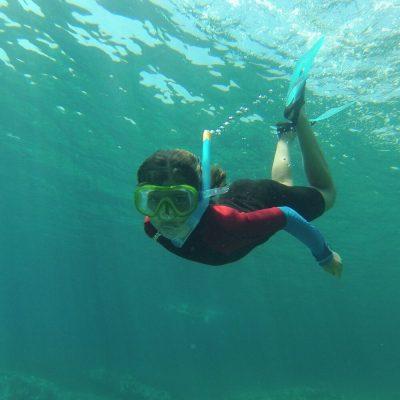 Snorkelling | Boat Excursion
